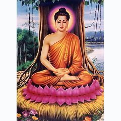 Playlist Kinh Phật -