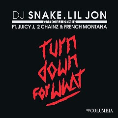 Turn Down For What (Remix) - DJ Snake