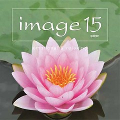 image15 emotional & relaxing - Various Artists