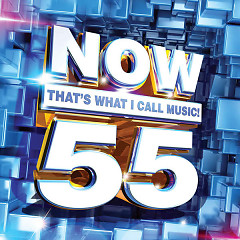 Now That's What I Call Music, Vol. 55 - Various Artists