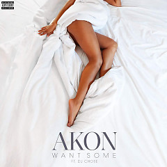 Want Some (Single) - Akon,DJ Chose