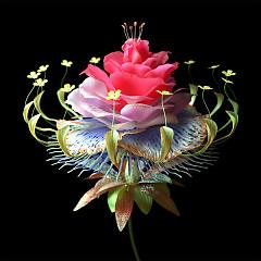 Album Super Natural (Single) - Danny L Harle, Carly Rae Jepsen