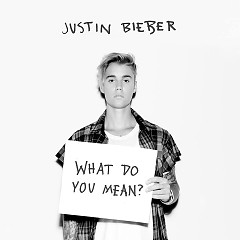 What Do You Mean (Single) - Justin Bieber