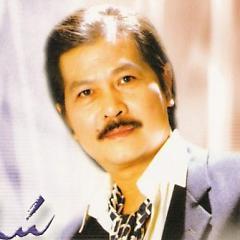 Playlist Sĩ Phú -