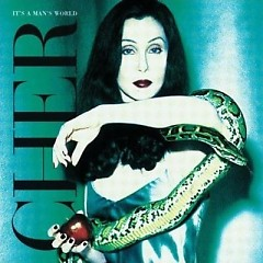 It's A Man's World (Cover Songs) - Cher