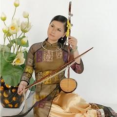 Người Tình Không Đến - Huỳnh Kim