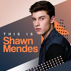 Album Những Bài Hát Hay Nhất Của Shawn Mendes - Shawn Mendes
