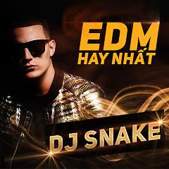 Các Bản Nhạc EDM Hay Nhất Của DJ Snake - DJ Snake