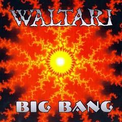Album  - Waltari