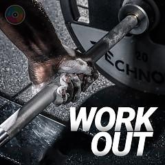 Workout (Những Bài Hát Dành Cho Luyện Tập Thể Thao) - Various Artists
