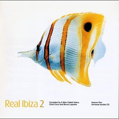 Real Ibiza Volume 2 Disc 2 - Various Artists