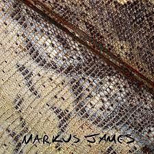Album Snakeskin Violin - Markus James