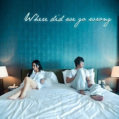 Where Did We Go Wrong (Single) - Thu Minh,Thanh Bùi