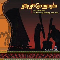 Gặp Gỡ Cao Nguyên - Various Artists