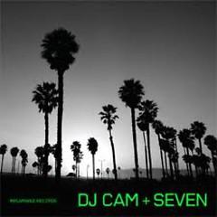 Album Seven - DJ Cam