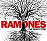 Bài hát Cherry Bomb - Ramones