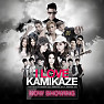 Album I Love Kamikaze Now Showing - Various Artists