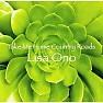 Bài hát Take Me Home Country Roads - Lisa Ono