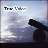 Bài hát True Voice - Hatsune Miku