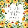 Bài hát Tôi Thấy Hoa Vàng Trên Cỏ Xanh (Cover) - Nicky Wook