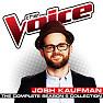 Bài hát Happy (The Voice Performance) - Josh Kaufman