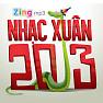 Tết Đoàn Viên (Nhạc Xuân 2013) - Various Artists