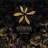 Bài hát Flower - Xiah Junsu  ft.  Tablo