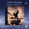 Gypsy Flamenco - Carlos Heredia