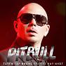 Tuyển Tập Các Bài Hát Hay Nhất Của Pitbull - Pitbull