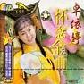 Album 怀念金曲/ Remembering the Golden Hits - Trác Y Đình
