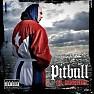 Bài hát Bojangles Remix - Pitbull