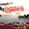 Lc Gia Ph Hoa - Various Artists