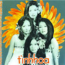 Tình Hoa - Various Artists