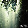 Mưa Chiều - Various Artists