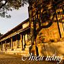 Chiều Nắng - Various Artists