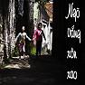Ngõ Vắng Xôn Xao - Various Artists