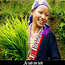 Nụ Cười Sơn Cước - Various Artists