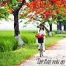Bài hát Sông Đắc Krông Mùa Xuân Về - Thanh Thanh Hiền