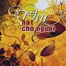 Bài hát Chiều Mơ - Thanh Thúy