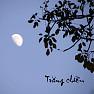 Trăng Chiều - Various Artists