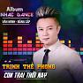 Bài hát Thất Tình (Remix) - Trịnh Thế Phong