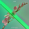 Bài hát Never Be Like You - Flume , Kai