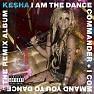 Bài hát Animal - Kesha Sebert