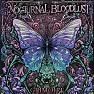 Bài hát A DAY TO RE:MEMBER - Nocturnal Bloodlust