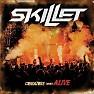 Bài hát Intro - Skillet