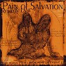 Bài hát Second Love - Pain of Salvation