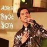 Bài hát Đón Xuân Này Nhớ Xuân Xưa - Ngọc Sơn