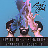 Bài hát How To Love (Acoustic) - Cash Cash , Sofia Reyes