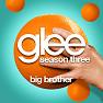 Album Glee Season 3 EP 15 Singles: Big Brother - The Glee Cast