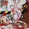 Bài hát Blowtorch Slaughter - Cannibal Corpse